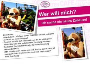 Teddy sucht neues Zuhause!